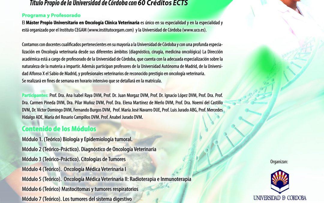 Máster Propio Universitario. Oncología Clínica. Veterinaria